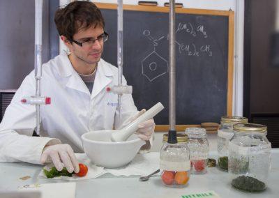 Preparazione campioni food per successive analisi strumentali