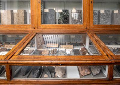 Vetrina espositiva con campioni di rocce sedimentarie e metamorfiche.