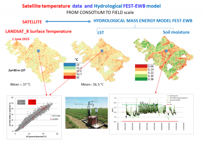 modellazione della dinamica dell'umidità del suolo e dell'evapotraspirazione integrata con misure da stazioni micro-meteorologiche e telerilevamento satellitare