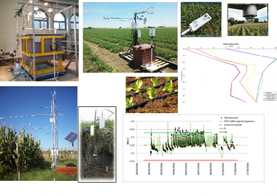 monitoraggio dei flussi d'acqua nel sistema suolo-vegetazione-atmosfera