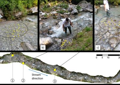 studio sperimentale del trasporto solido lungo i corsi d'acqua attraverso microchip nei sassi gialli