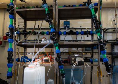 Circuito per acqua potabile con sensori di sporcamento