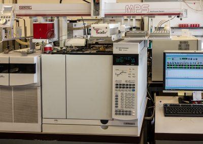GC-MS/MS Gas cromatografo con rivelatore a spettrometria di massa triplo quadrupolo