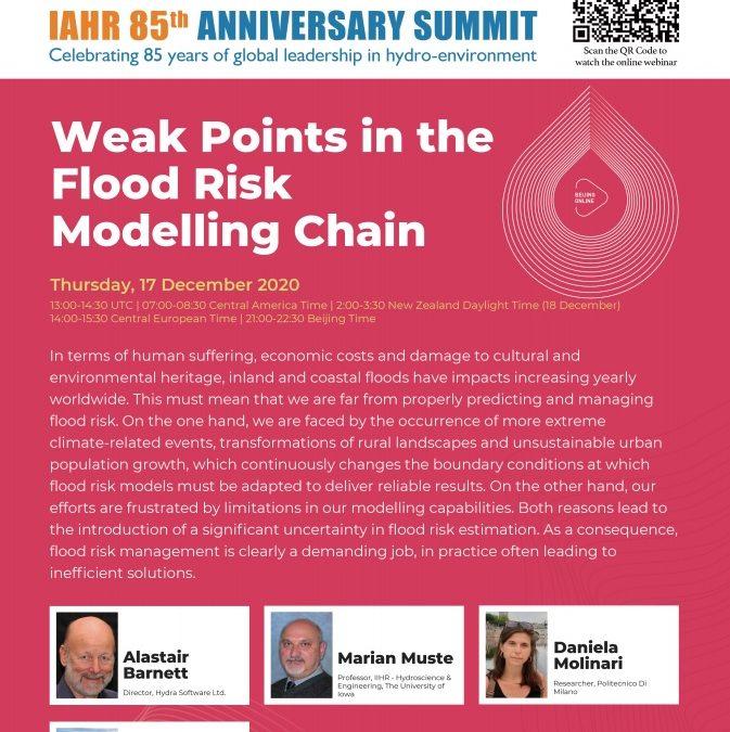 Anniversario dell'85° Vertice IAHR – Celebrando l'85° anno della leadership globale sull' idro-ambiente